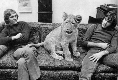 christian-the-lion-with-friends2