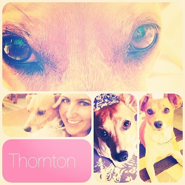 Happy Birthday Thornton 2014