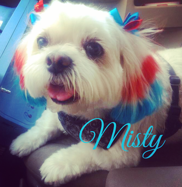 Misty's July 4th tips