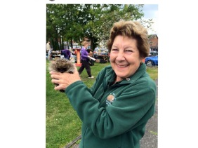 Joan Lockley West Midlands Hedgehog Rescue